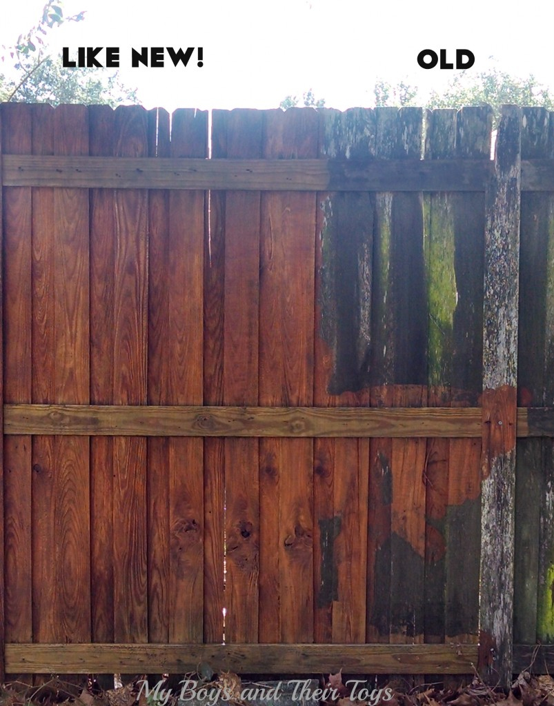 pressure washed fence