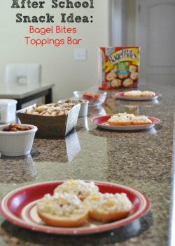 Bagel Bites Toppings Bar