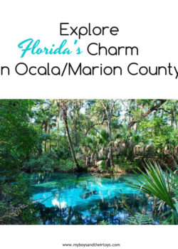 florida's charm in Ocala