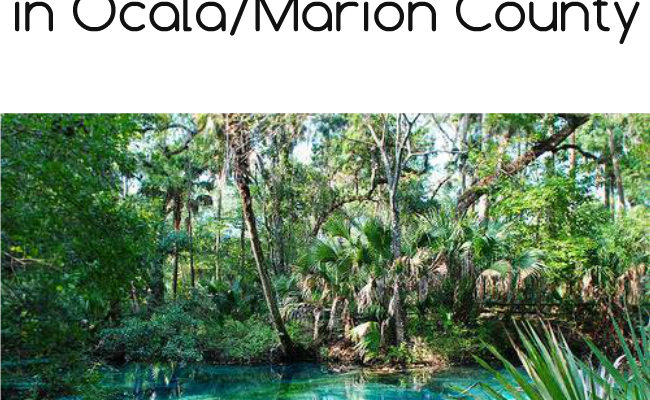 Explore Florida's Charm this Spring in Ocala/Marion County
