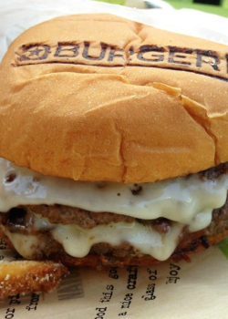 burgerfi-best-burger