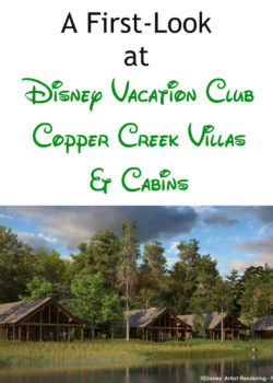 disney vacation club new property