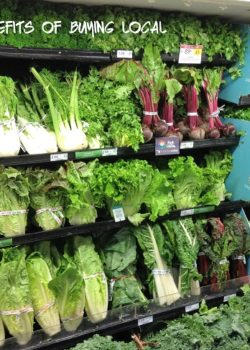 Fresh From Florida – Why it's Important to Buy Locally