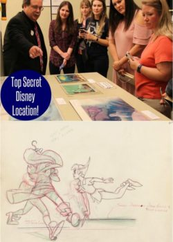 top secret disney location