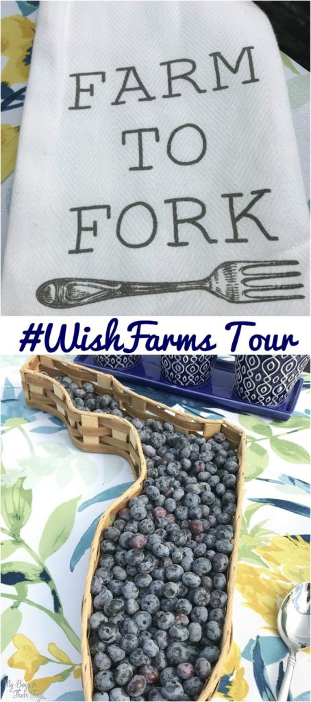 #wishfarms tour