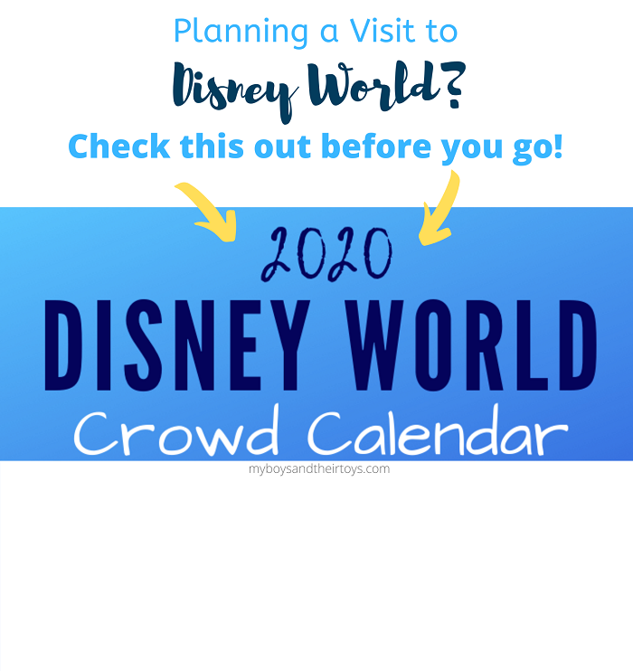 Planning a Visit to Disney World