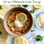 Quick Orzo Minestrone Soup Recipe