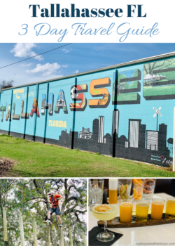 tallahassee fl guide