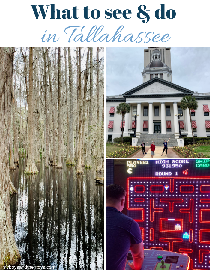 what to do in tallahassee